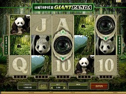 untamed-giant-panda-slot
